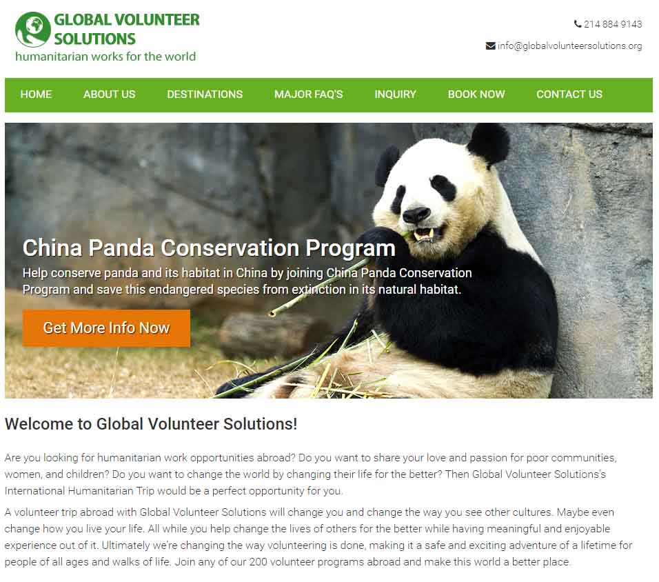 Global Volunteer Solutions